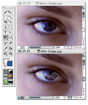 Corel Painter v11.0 (25/2/2009)