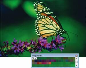 Dokumen / Gambar palet
