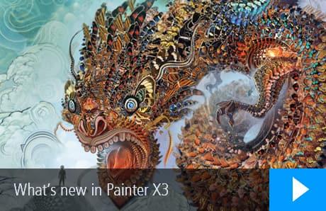 Buy OEM Painter X3